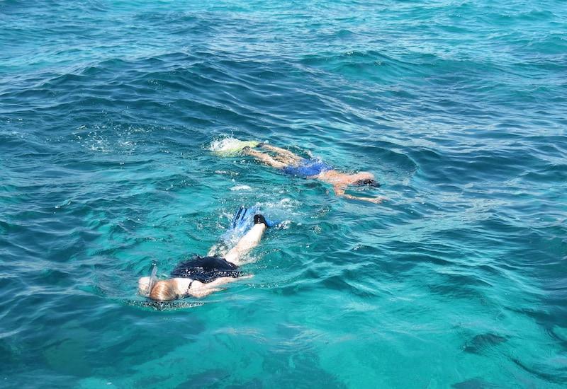 islamorada snorkeling tours